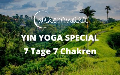 Dein Yin Yoga Special kommt am 28.03.21